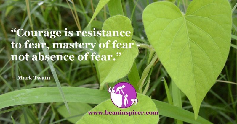 Being Afraid Does Not Mean That There Is An Absence Of Courage