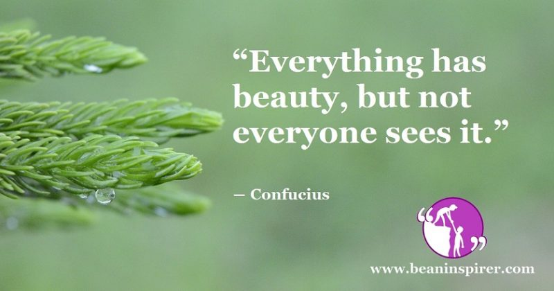 To See Something Beautiful, First You Need To Have A Beautiful Sight