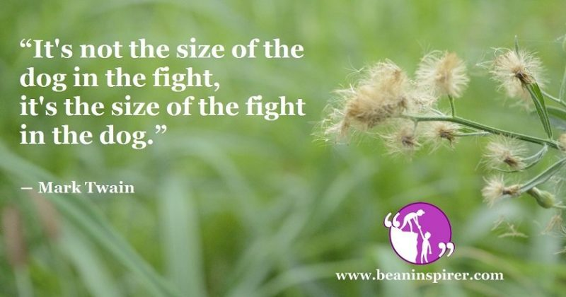 Don't Stop The Fight Just Because You Are Tired