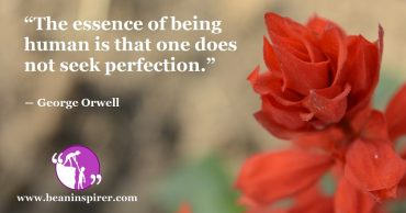 How to Seek Happiness in Imperfection