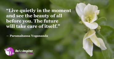 Live Quietly in the Present, Work for the Present and the Future will be Amazing!