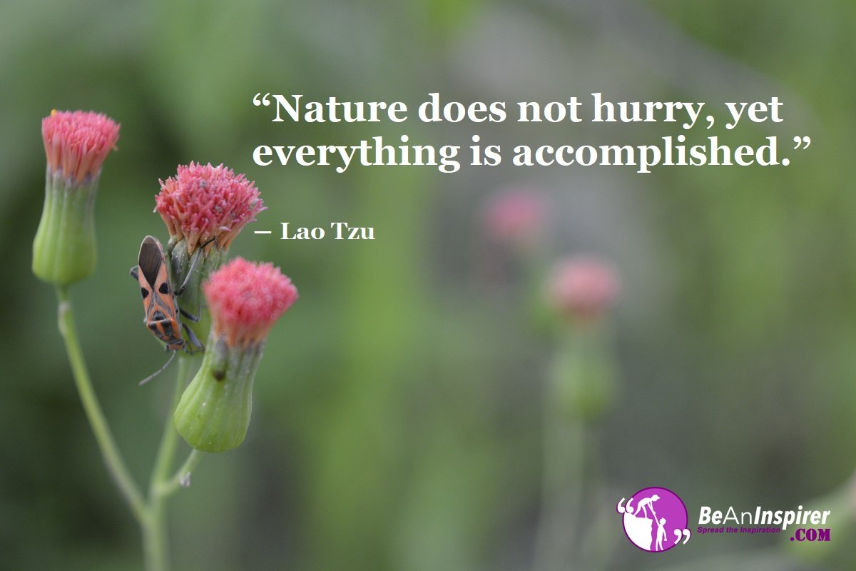 Nature Quotes Beaninspirercom