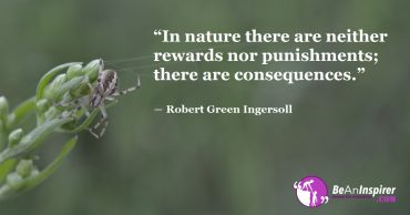 The Game of Nature is Straightforward; Beware of Your Acts or Be Ready for Valid Consequences
