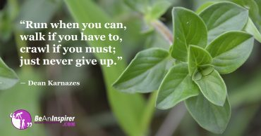 The Art Of Never Giving Up Despite All The Hurdles In Life