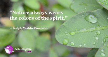 Representation Of Your Own Spirit Is What Nature Reflects To You! The Colourful Spirit Of Nature Never Dies!!