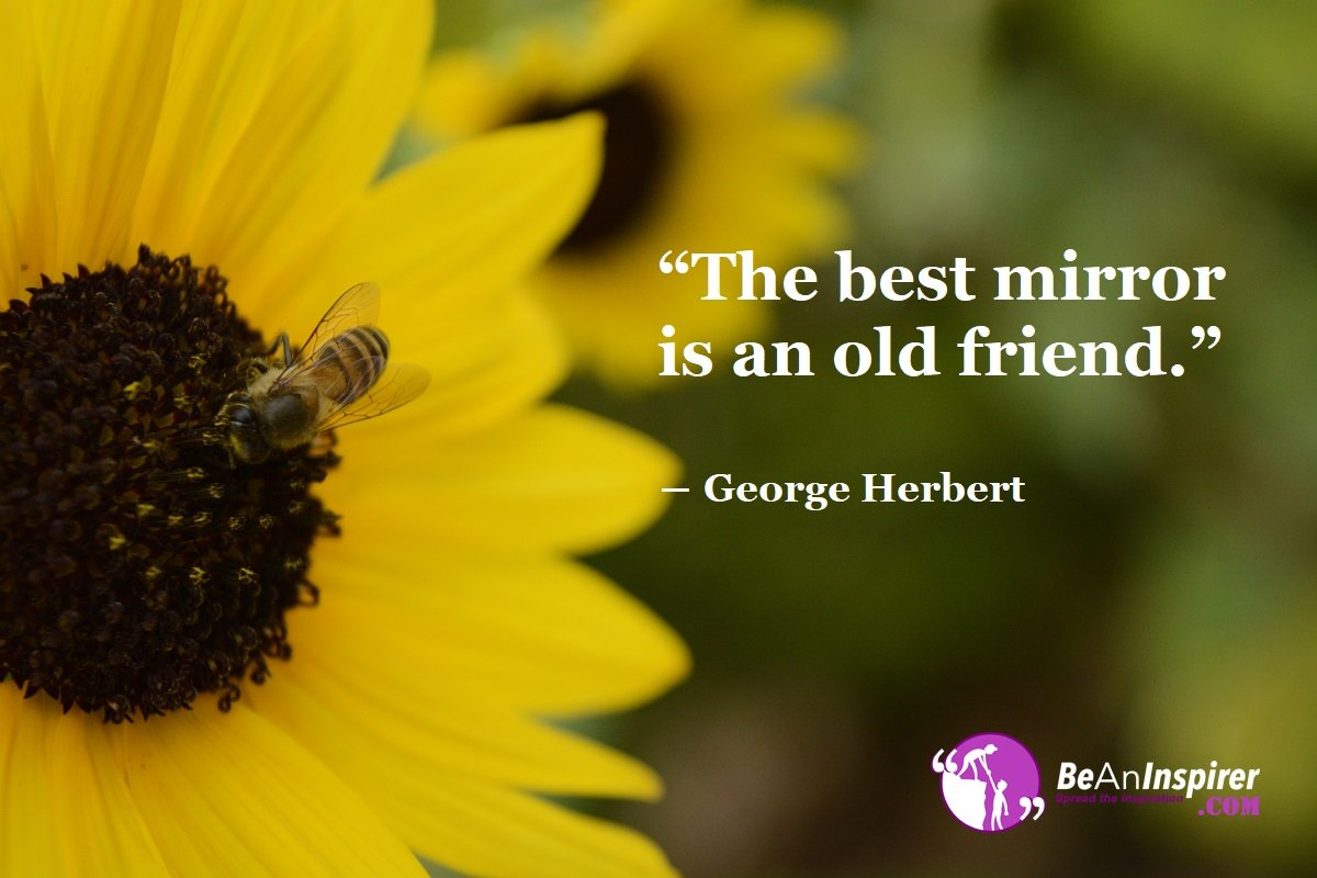 The-best-mirror-is-an-old-friend-George-Herbert-Top-100-Friendship-Quotes-Be-An-Inspirer