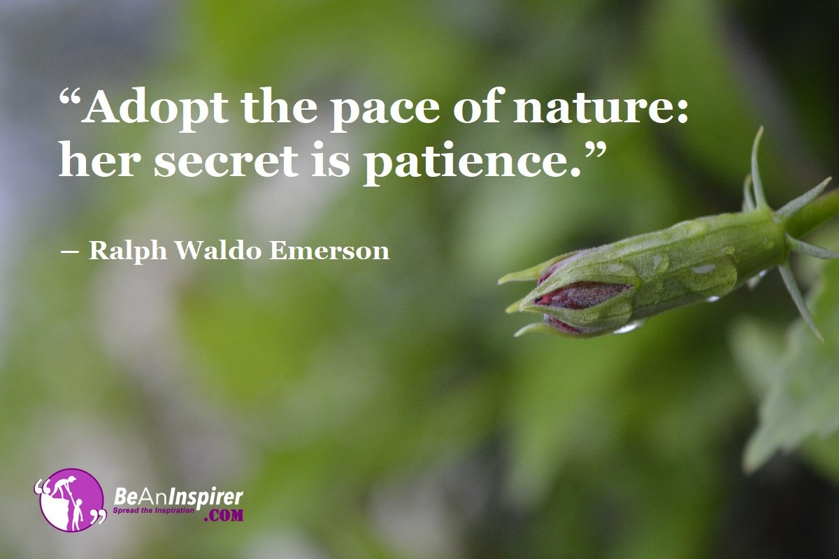 Patience: The Perfect Key To Unlock Success However Hard The Path Of Life Leads