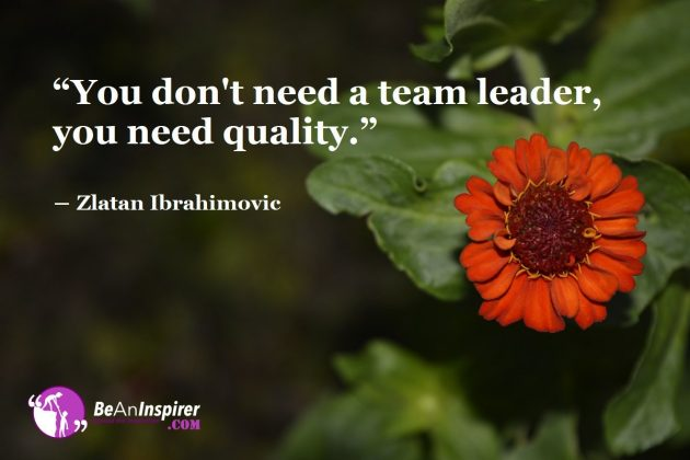 You-dont-need-a-team-leader-you-need-quality-Zlatan-Ibrahimovic-Team-Leader-Qualities-Be-An-Inspirer