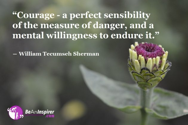 Mental Willingness To Endure Danger
