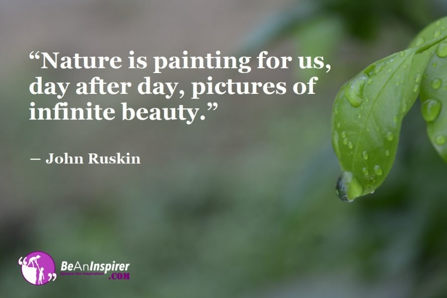 Nature: A Treat To Our Eyes - How To Appreciate The Beauty Of Nature?
