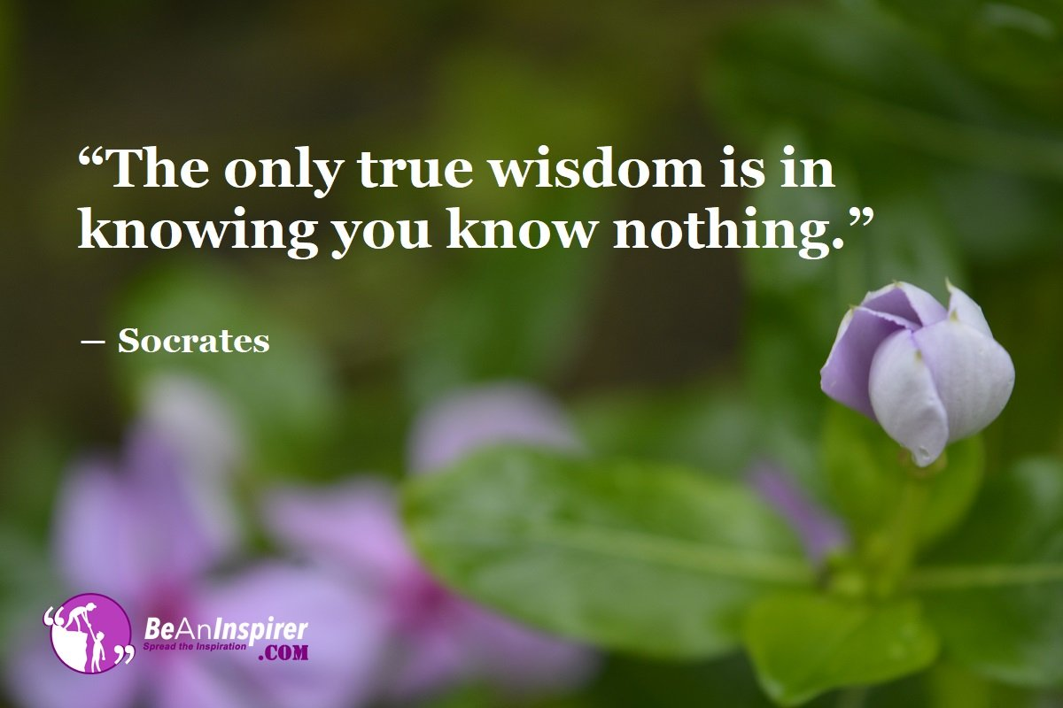 369 Wisdom Quotes for Wise Thinking | Words of Wisdom