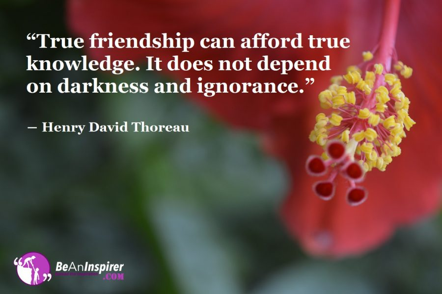 Indistinct Ways To Know The Value of Friendship In Our Life