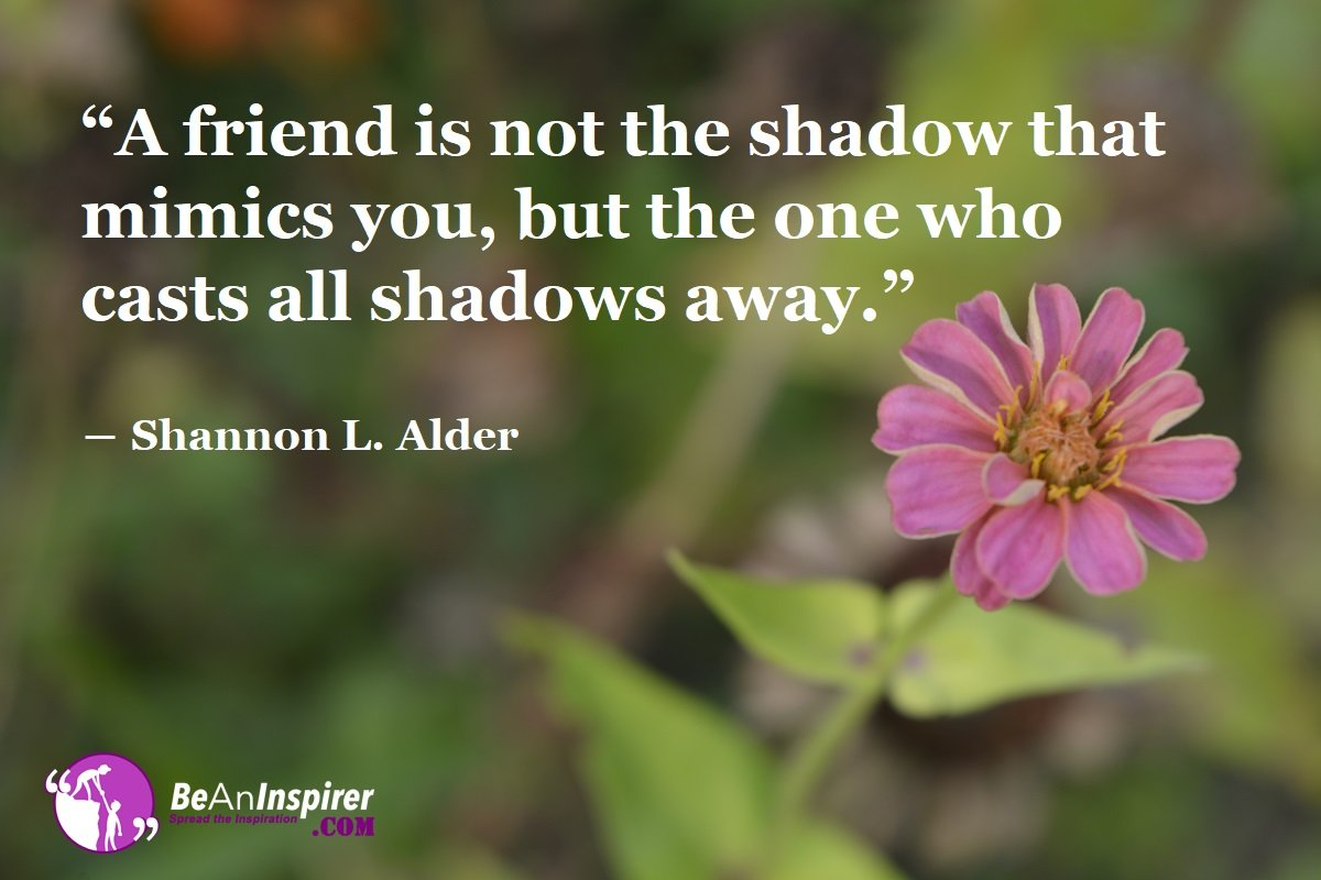Friendship Casts Away the Dark Shadows of Life